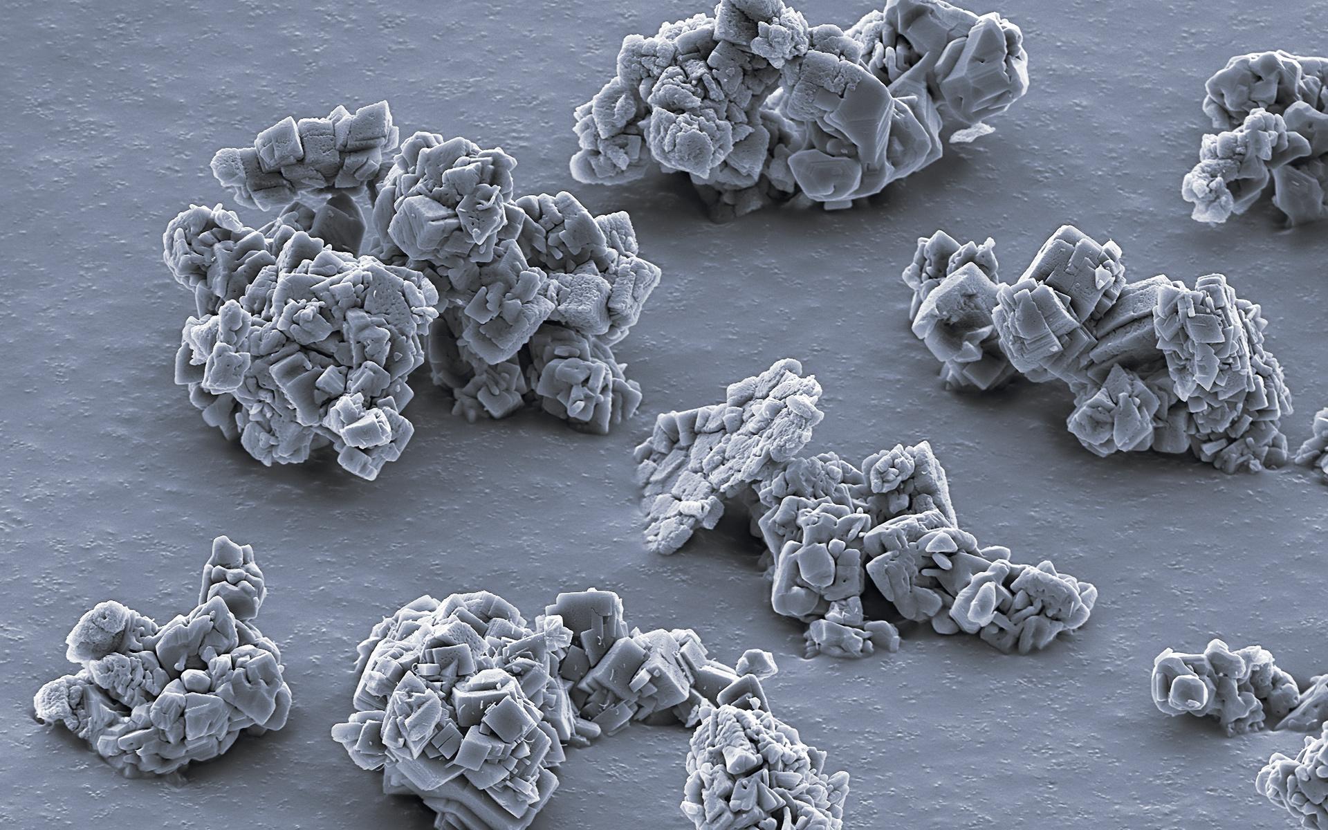 4.000 fach vergrößertes Polieragglomerat. Durch das Zerfallen während des Polierens nimmt die Polierwirkung ab.